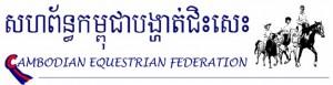 Logo Final Fede [685x300]
